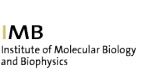 Institute for Molecular Biology and Biophysics